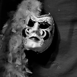 Theater Mask by Dave Gibson - Artistic Objects Clothing & Accessories ( clown, art, mask, theater, harlequinn,  )
