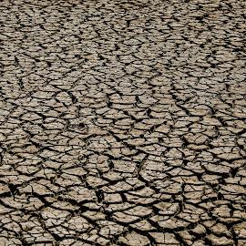 Dry land by Praveen Chandra - Landscapes Deserts ( gujarat, desert, little rann of kutch, summer )