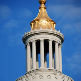 A Touch of Gold by Sherry Judd - Buildings & Architecture Architectural Detail ( state capital, dome, ar, architectural detail, gold )