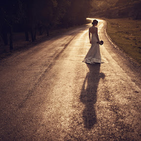 Wedding in sunset by Marian Sterea - Wedding Bride ( dress, sunset, wedding, road, bride )