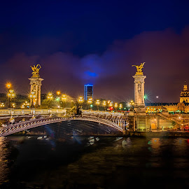 Pont Alexandre Bridge by Sheldon Anderson - Buildings & Architecture Statues & Monuments ( paris, pont alexandre bridge, night, bridge, river,  )
