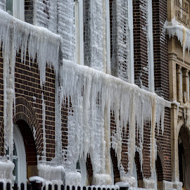 fire drip by Fred Faulkner - City,  Street & Park  Neighborhoods ( lincoln park, ice, icecicle, chicago, mulligan school, fire )