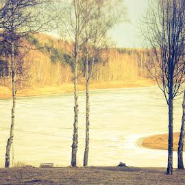 by Dunja Stojkovic - Novices Only Landscapes (  )