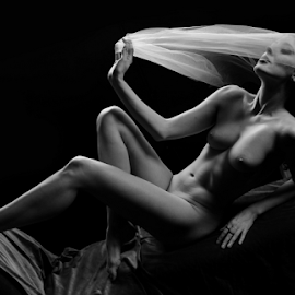 Let me cover myself by Vineet Johri - Nudes & Boudoir Artistic Nude ( studio lighting, art nude, vkumar photography, fabric, curves shadows, beautiful girl )
