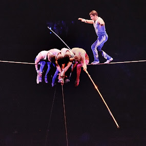Circus High Wire Act by Stephen Beatty - News & Events Entertainment