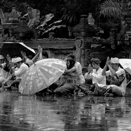 People Praying at the Temple by Ferdinand Ludo - People Street & Candids ( bali, temple of spring, rainy day, indonesia, people praying,  )