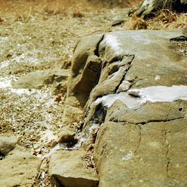 Ice on Stone by Gunnar Bach - Nature Up Close Rock & Stone ( macro, winter, nyack, new york, ny, landscape, rockland, lohud )