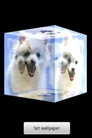 3D 可愛い犬A12