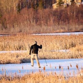 Potter's Marsh by Leslie Nu - Sports & Fitness Other Sports ( ak, ice, snow, sports, potter's marsh )