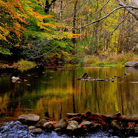 Autumn on the Mill River by Carl Testo - Landscapes Waterscapes ( autumn, sleeping giant, mill river )