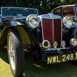 mg roadster by John Richards - Transportation Automobiles
