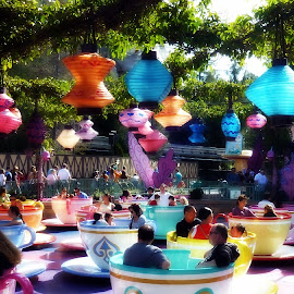 Tea Cups by Deborah Russenberger - City,  Street & Park  Amusement Parks ( amusement park,  )
