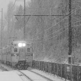 SEPTA in the Snow 2 by John Ogden - Transportation Trains ( septa, snow, rail, train, transportation )