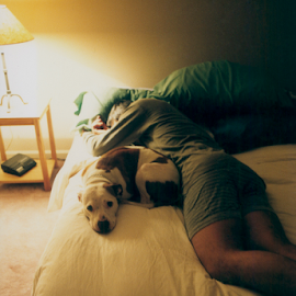Nap Time by Rob Kovacs - Novices Only Pets (  )