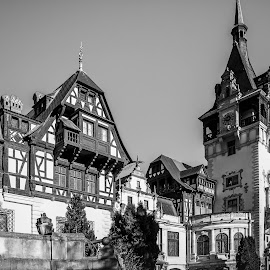 Peles Castle by Adrian Ioan Ciulea - Buildings & Architecture Public & Historical ( roof, tower, detail, building, black and white, windows, castle, historical, architecture, old building, palace, balcony )