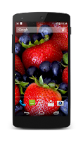 Screenshot of Berries Live Wallpaper