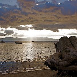 Stormy shoreline by Jp Bergeron - Landscapes Cloud Formations ( clouds, stump, sunbeams, shoreline, lake tahoe )
