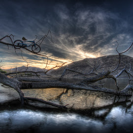 High Limb by Eric Demattos - Transportation Bicycles ( high limb, reflection, mountains, sunset, blue bike, river )