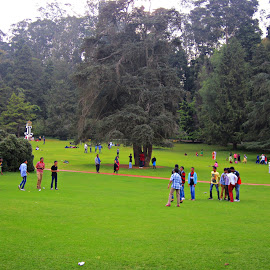cool park by Venkat Krish - City,  Street & Park  City Parks ( #cool #ooty #people #park #india #chill #trees #green )