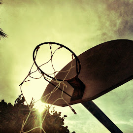 Above the Rim by Jared Lantzman - Sports & Fitness Basketball