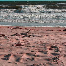 Pink Sands by Leigh Martin - Landscapes Beaches ( waves sand beach )