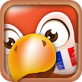 App Learn French Phrases | French Translator apk for kindle fire
