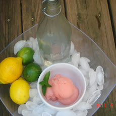 Lemon, Lime Campari Sorbet Float