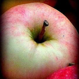 Time for apple crisp! by Liz Hahn - Nature Up Close Gardens & Produce