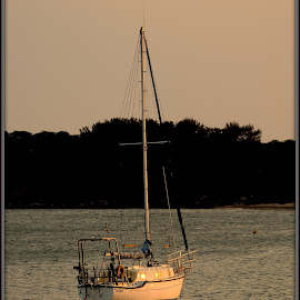 Sailing away...in the Sunset... by Celia Watkins - Transportation Boats