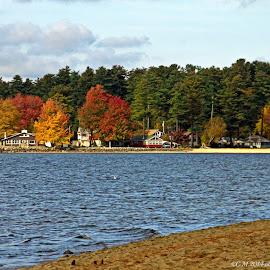 Maine Autumn 2014 by Catherine Melvin - Landscapes Beaches ( autumn leaves, colors, sebago lake, nature photography, maine landscape,  )