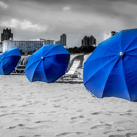 The Shades of Blue by Jan Murphy - Artistic Objects Other Objects ( sand, sun shades, umbrellas, blue, black and white, sunny, florida, miami, hot, beach )