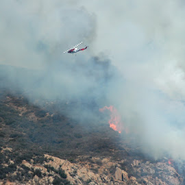 Water Dropping by Jesse Thrush - News & Events Disasters ( helicopter, san diego, wildfire, helitanker, fire )