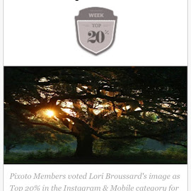 Top 20% Instagram Award on Pixoto by Lori Broussard - Instagram & Mobile Instagram ( photooftheweek, award, votedtopphoto, awesomeshot, accomplished, andtheawardgoesto, bayoucity, bestphoto, canon, myphotography, mine, proud, pdap, sobrietyisfun, sunrise )