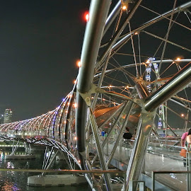 The Helix Bridge, Singapore by Natasha Giles - Buildings & Architecture Bridges & Suspended Structures ( park, night photography, night scene, city life, bridge, architecture, bridges, design, singapore, city, singapore river )