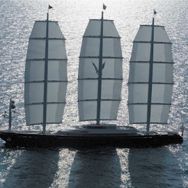 The maltese falcon by Marco Poli - Transportation Boats