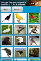 Screenshot of Bird Sounds Free