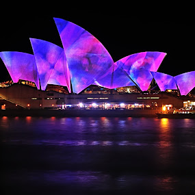 by Kaye Menner - Buildings & Architecture Public & Historical ( night light, harbor, colorful, pink and blue, vivid sydney, reflections, kaye menner photography, architecture, landscape, light projections, kaye menner, photography, colorful lights, lights, light on opera house, bennelong point, sydney opera house, projections, pink, long exposure, light, water, kaye menner vivid sydney, building, patterns, sydney harbour, kaye menner night, light painting, blue, light reflections, night, opera house, reflections on opera house, pink and blue opera house, creativity, lighting, art, artistic, purple, mood factory, color, fun,  )