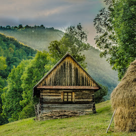 you got fairies living there? by Claudiu Daraban - Buildings & Architecture Homes ( munti, cabin, carpathian, mountain, cabana, carpati, trees,  )