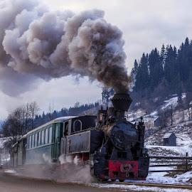 Dom dom,sa-naltam! by Sveduneac Dorin Lucian - Transportation Trains