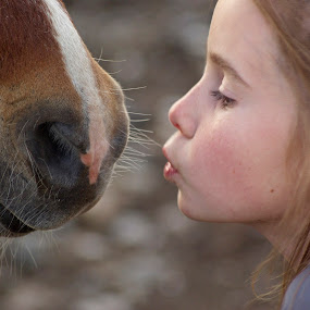 A kiss for you by Giselle Pierce - Babies & Children Children Candids ( nostril, miniature horse, face, kiss, muzzle, friends, horse, whiskers, lips, animal, girl.little girl )