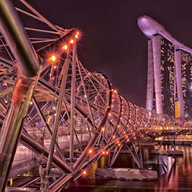 The Helix Bridge by Vincent Sinaga - Buildings & Architecture Bridges & Suspended Structures ( helix bridge, sand hotel, purple, long exposure, singapore )