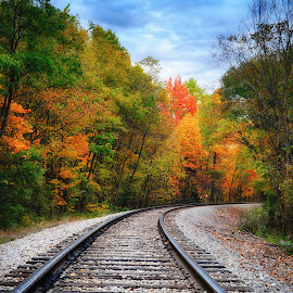 by Brian Hollars - Transportation Railway Tracks ( color, foliage, railroad, atumn, fall, track, rail, lines, tracks, leaves )