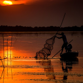 The Fisherman by Radu Dumitrescu - Landscapes Waterscapes ( water, sunset, fish, delta, fishing net, romania, fisherman, danube )