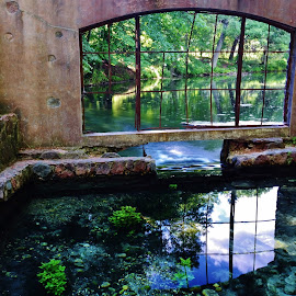 Paradise Springs by Lori Kulik - Buildings & Architecture Other Exteriors ( water, reflection, window, waterscape, exterior )