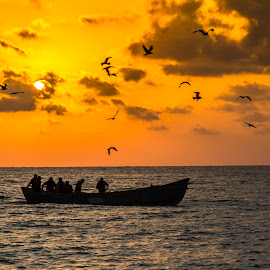 Black sea by Marius Peptan - Landscapes Sunsets & Sunrises (  )
