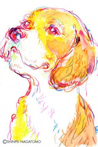【免費個人化App】Shinpei illust Book -DOG ART--APP點子
