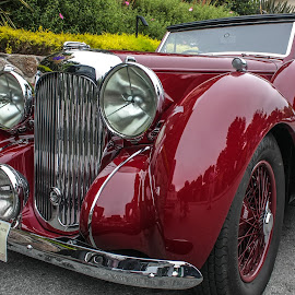 Lagonda by William Thompson - Transportation Automobiles ( motoring, classic cars, big sur, pebble beach, carmel )