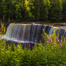 Upper Tahquemenon Falls by Leon Kauffman - Landscapes Waterscapes ( michigan, state park, waterfall, tahquemenon falls, flowers )