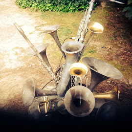 Combination of horns by Terry Linton - Artistic Objects Musical Instruments