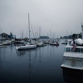 Camden by Bethany Carter - Transportation Boats ( water, maine, waterscape, boats, pier, camden, landscape )
